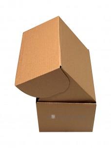 faltschachtel-karton-205x120x91mm-jenpack-gmbh-image-2